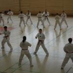 81-2013-03-03-Lehrgang - Kopie